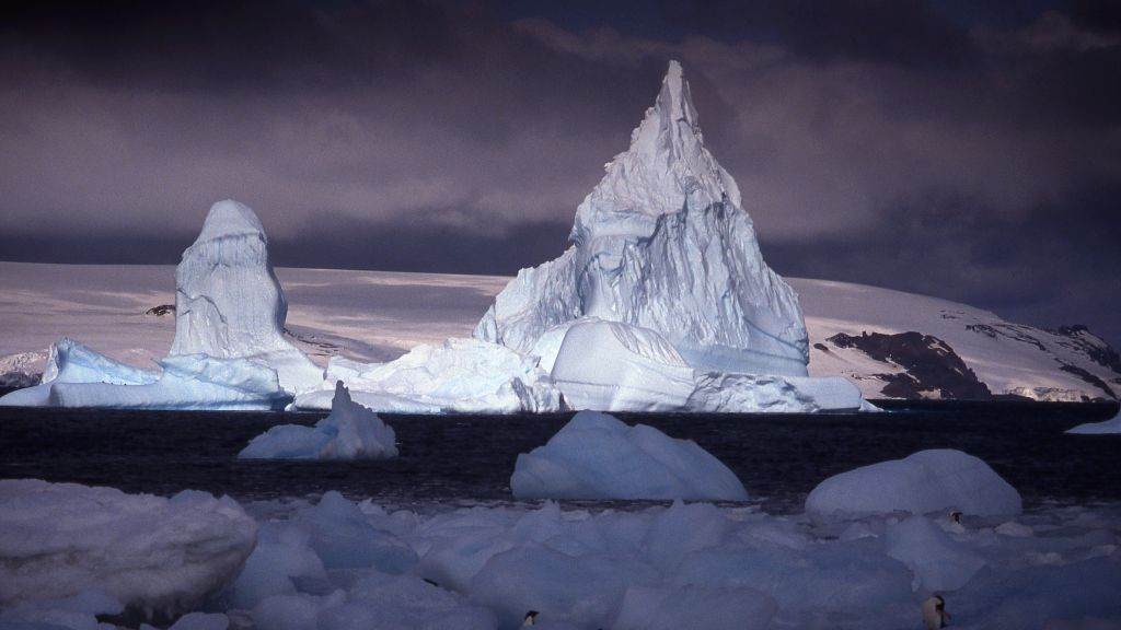 Frozen Antarctic marine landscape with penguins