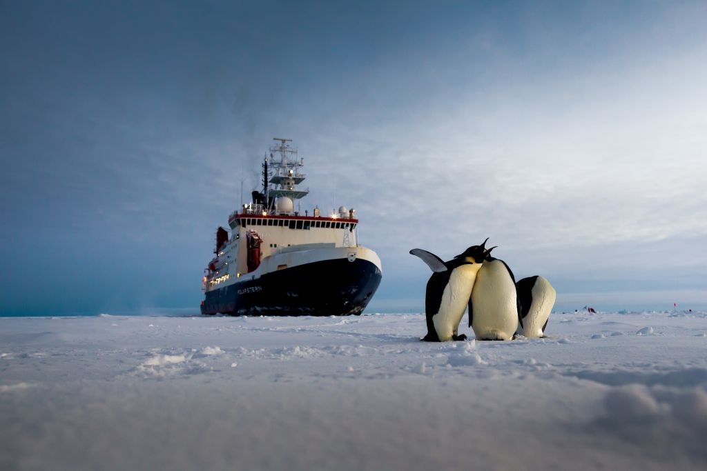 The Alfred Wegener Institute's research vessel, Polarstern, encounters some penguins while on mission in Antarctica. - © Alfred-Wegener-Institut/Mario Hoppmann