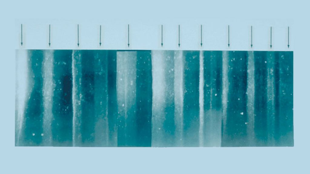 Section of ice core - © NICL