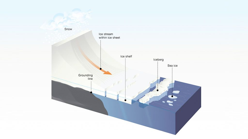 Image illustrating how ice flows off the continent and out to an ice shelf, which floats on the surface of the ocean. - © IPF