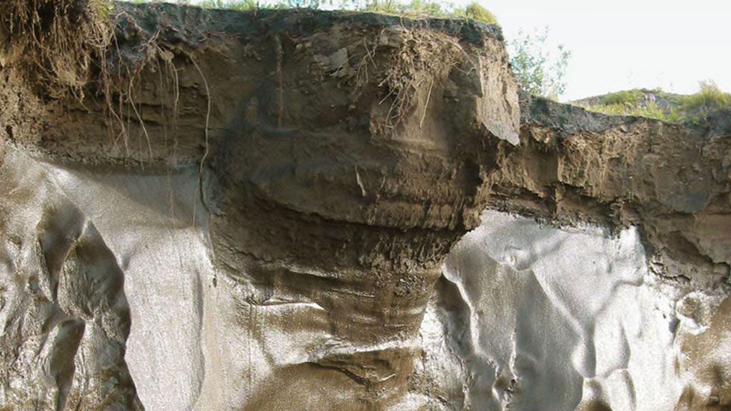 Cross-section of soil in the Arctic