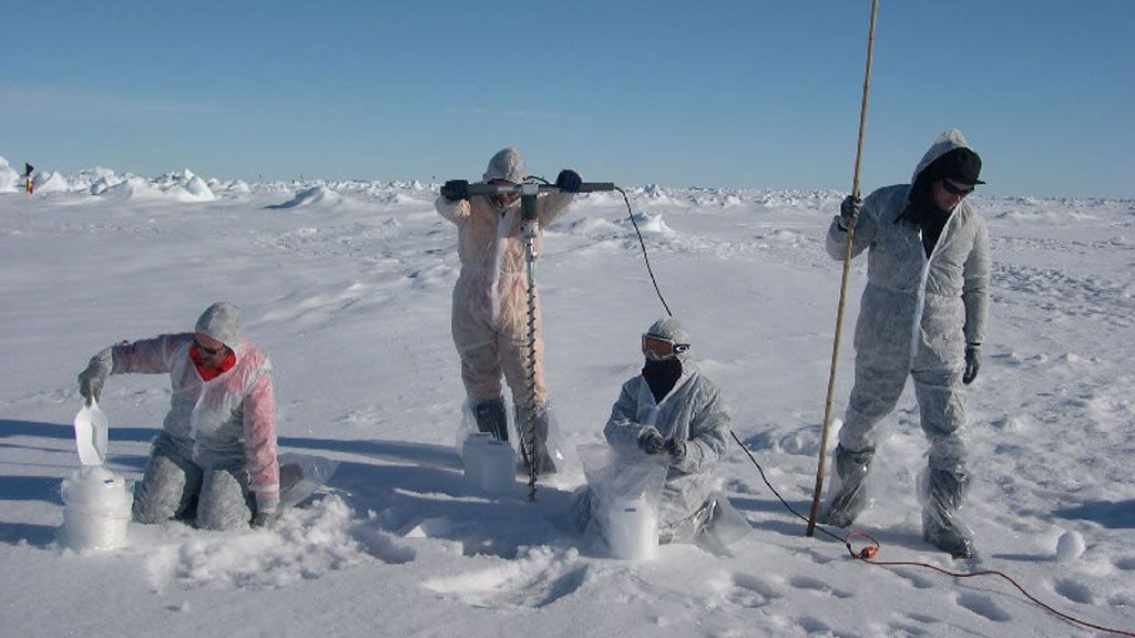Sampling Antarctic pack ice in trace metal clean conditions