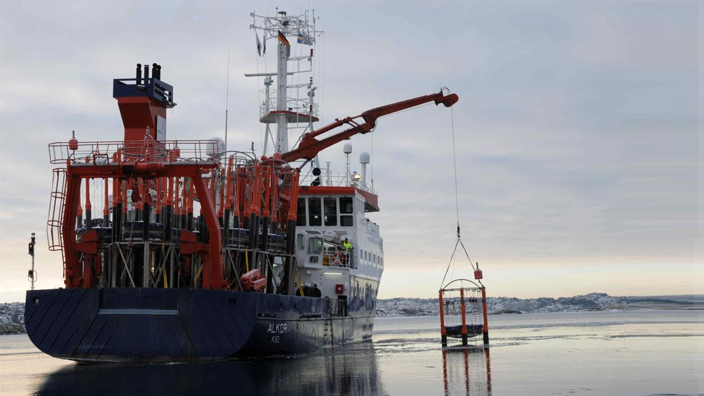 Scientists taking samples of marine life from the Arctic Ocean - © M. Nicolai, GEOMAR